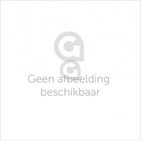 Guus van Glasgigant.nl