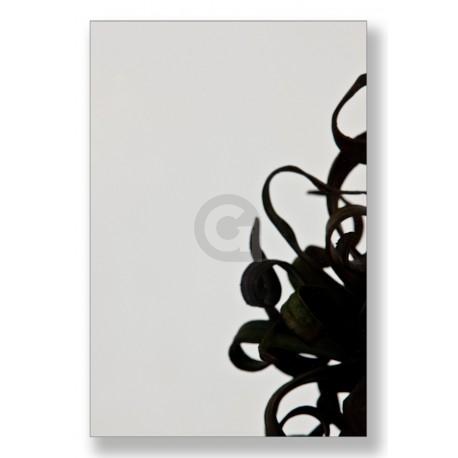 Enkel glas 8 mm Grijs