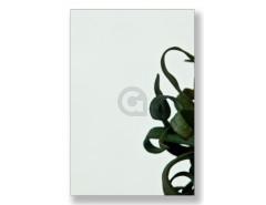 Enkel glas 8 mm Groen